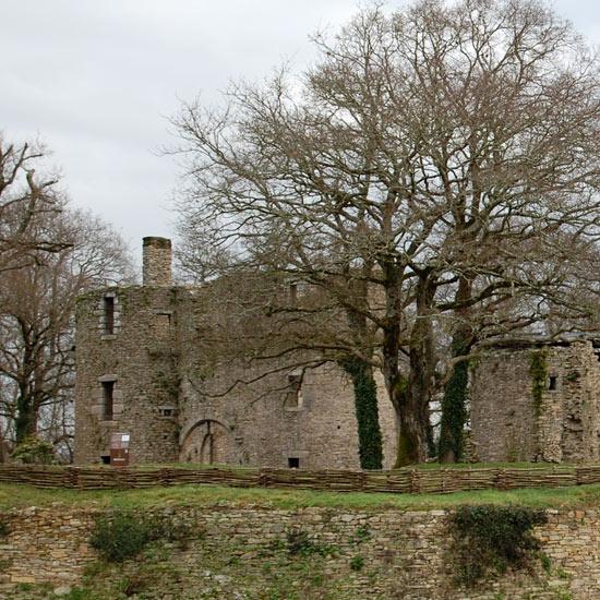 Le château de Ranrouët