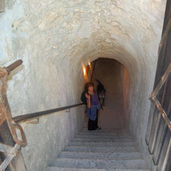 Le tunnel de Fort Lagarde