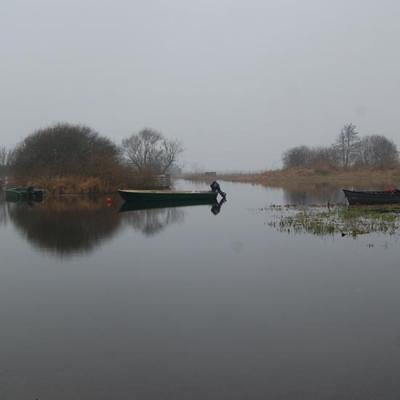 Le lac de Grand Lieu un matin en hiver
