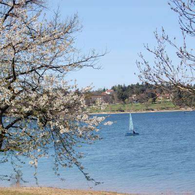 Panorama sur le lac de Saint-Ferréol