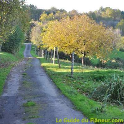 Sur la route de Saint-Robert