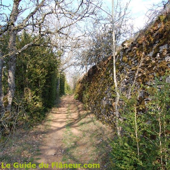 Le sentier entre buis et murets