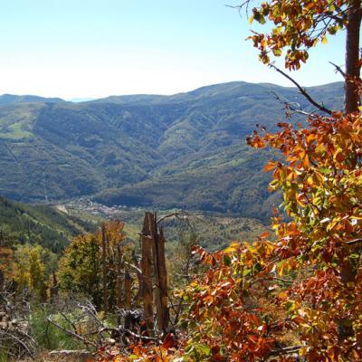 Le Vallespir en automne