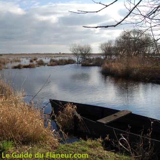 La Brière en Loire-Atlantique