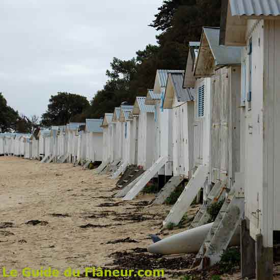 Randonnée à Noirmoutier-en-l'île