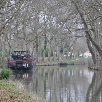 Le canal du midi en hiver