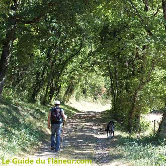 Sentier du Causse