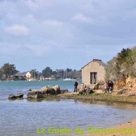 Randonnée à Séné - Morbihan