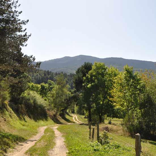 Chemin du Donezan