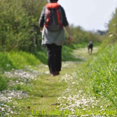 Chemin randonnee
