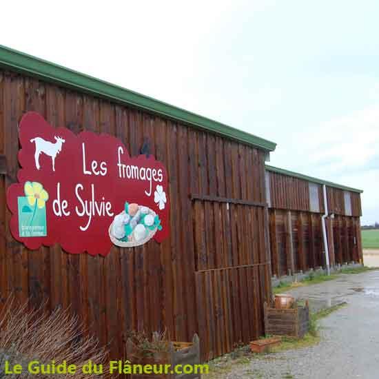 La chèvrerie et lieu de vente