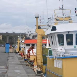 Guide port concarneau 2