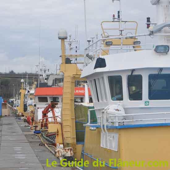 Guide sur le port de Concarneau