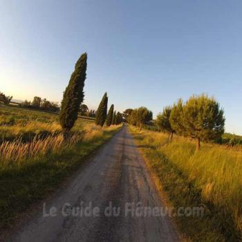 Guide de la randonnée à Fanjeaux