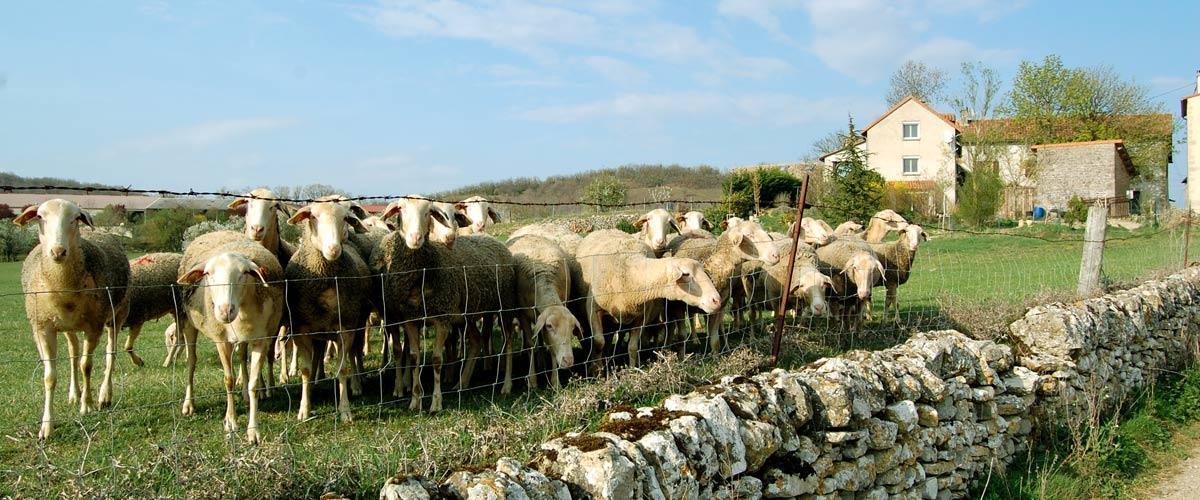 Guide du tourisme solidaire en Aveyron