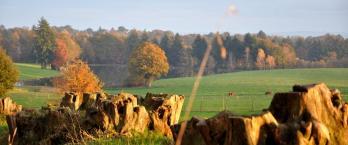 Guide du tourisme solidaire en Limousin