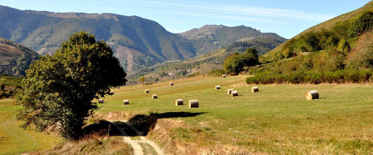 Guide du tourisme solidaire en Midi-Pyrénées