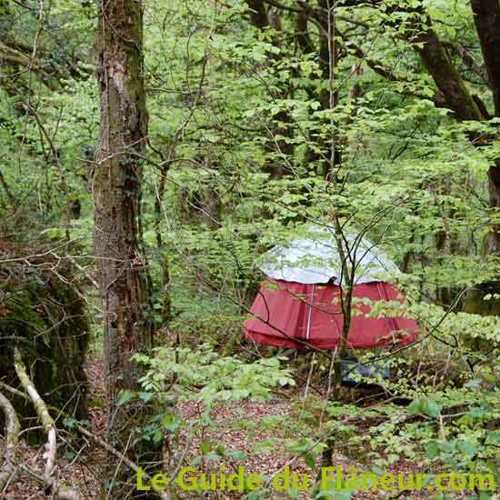 Bonnes adresses - Plum'arbres à Trémargat - Côtes d'Armor