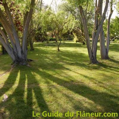 Jardin senteurs parc 2