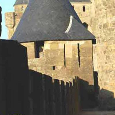 Lice carcassonne