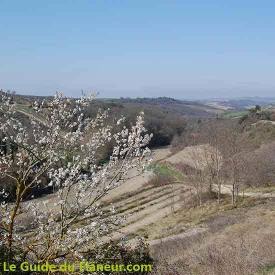 Randonnée à Fanjeaux dans l'Aude
