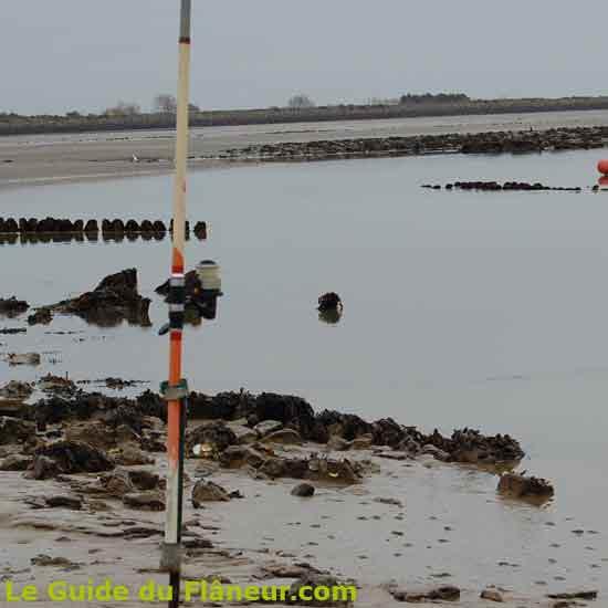 Balade au passage du Gois en Vendée
