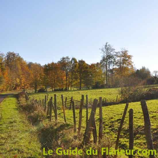 Randonnée de Cussac - Haute-Vienne
