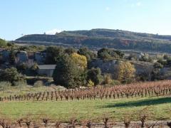 Félines-minervois Hérault France