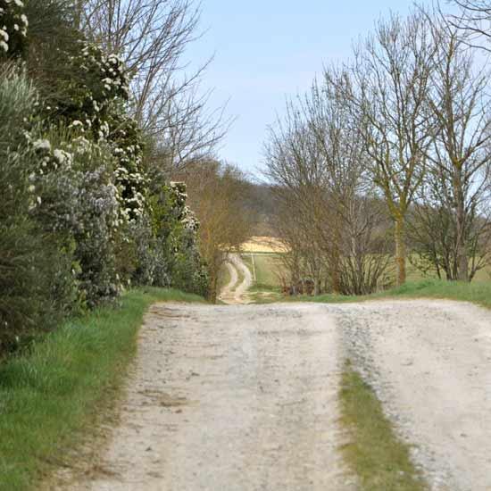 La piste menan au Brézyl