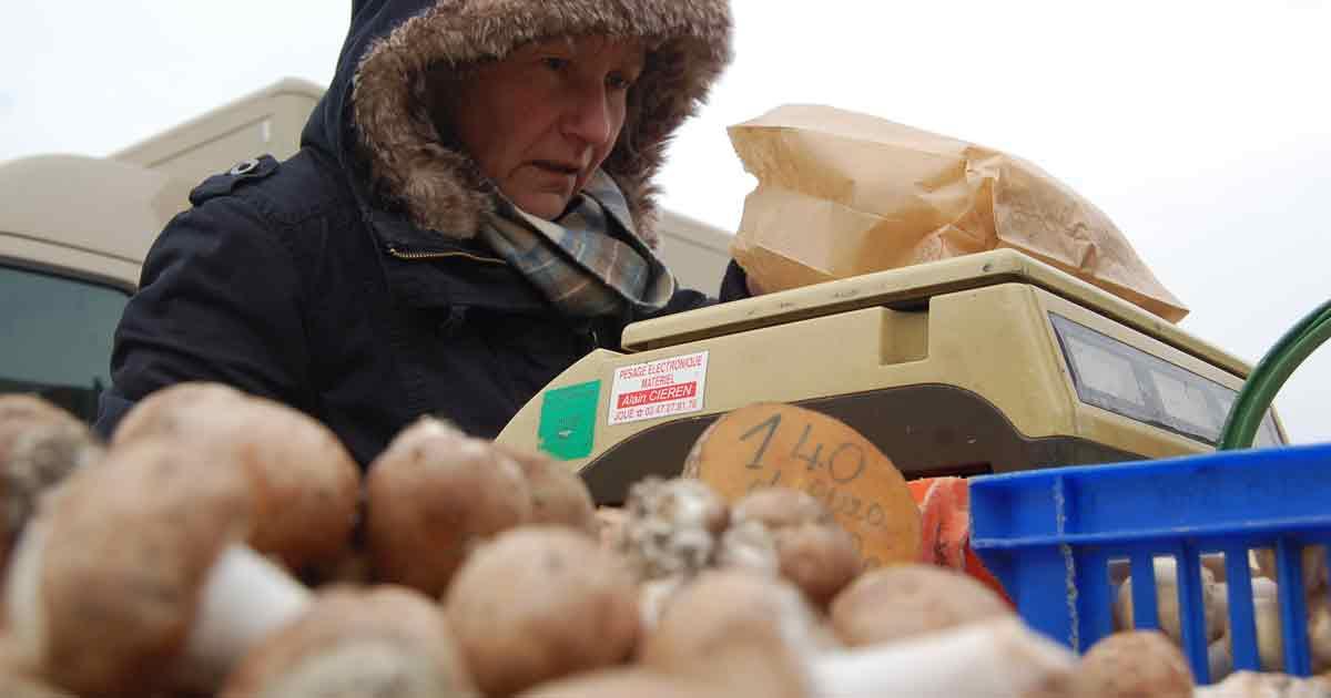 Producteurs locaux - Les champignons de Montsoreau