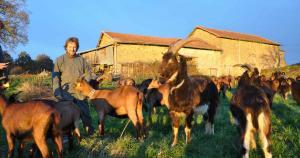 Producteur - Les chèvres de Gorre