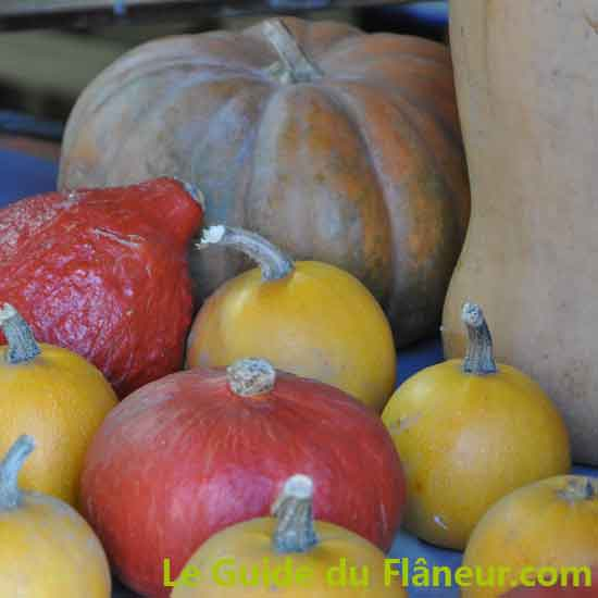 Producteurs locaux et agriculture - Ane et carotte - Champagnac-La-Rivière