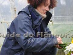 Producteurs horticultrice