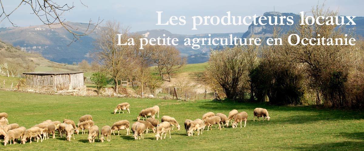 Les producteurs locaux en Occitanie
