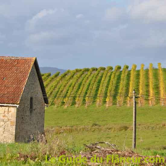 Randonnée à Queyssac-Les-Vignes - Corrèze