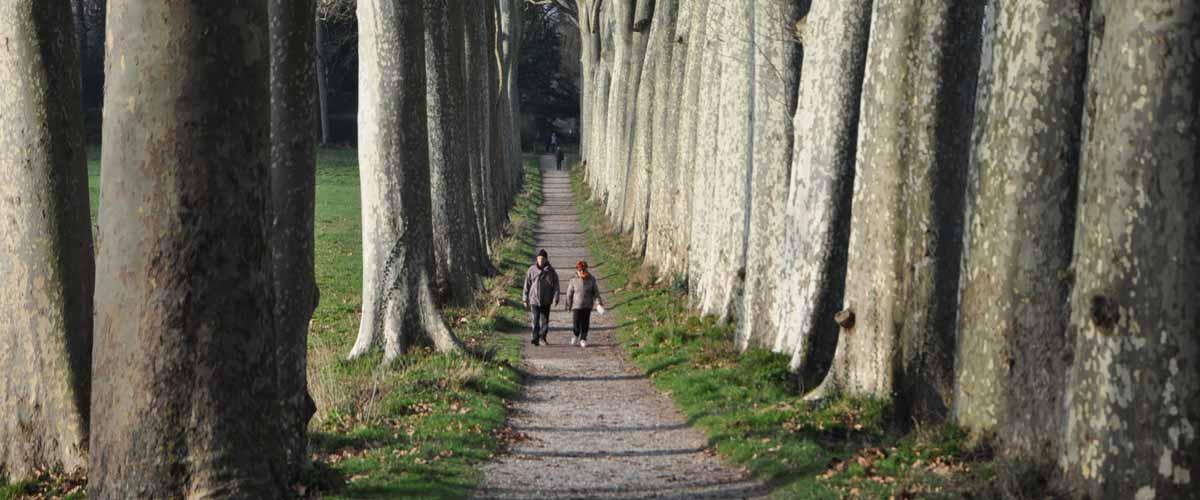 La rando d'Avignonet-Lauragais