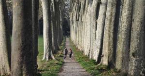 Randonnée à Avignonet-Lauragais