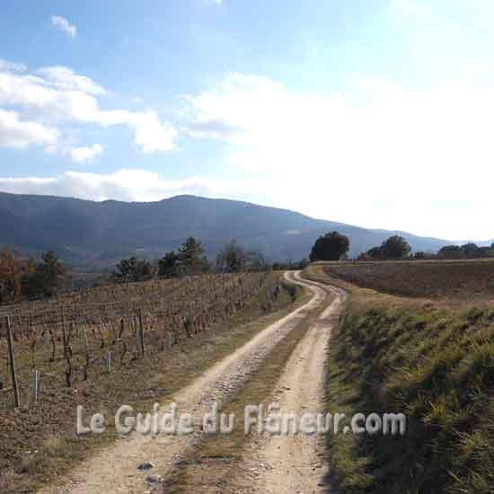 Le sentier de la rando à Limoux