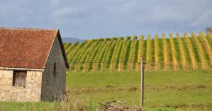 La randonnée de Queyssac-les-Vignes