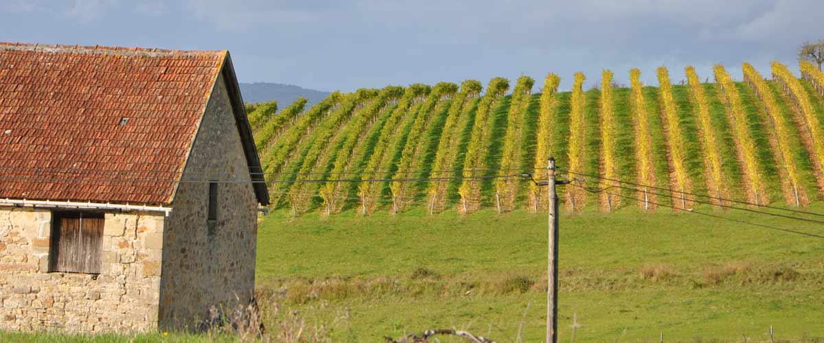 La randonnée de Queyssac-les Vignes