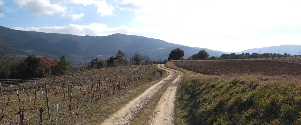 la randonnée de Saint-Polycarpe