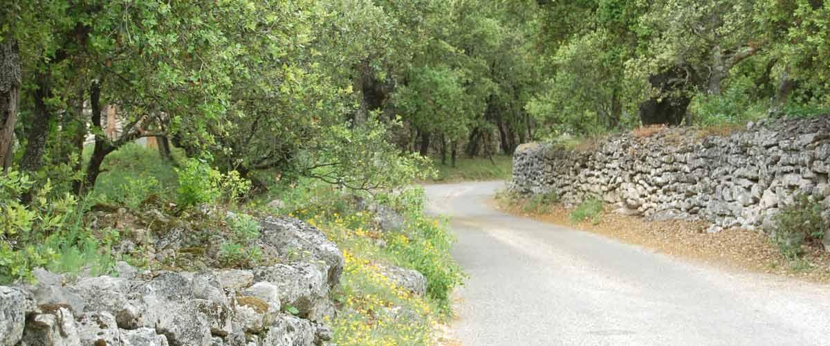 La randonnée de Saint-Restitut
