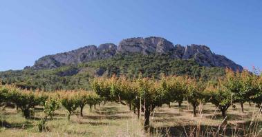 Les randonnée en Rhône-Alpes