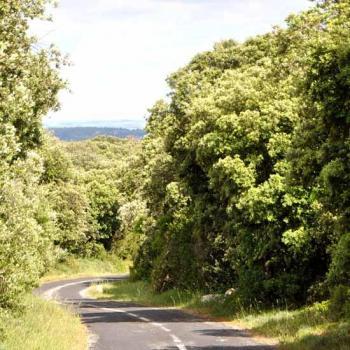 Une route sans voiture