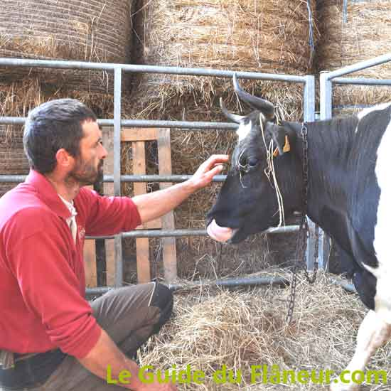 La ferme fromagère du Kleuz - Plounéour-Ménez