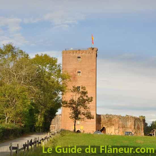 Le château de Montaner - Pyrénées-Atlantiques
