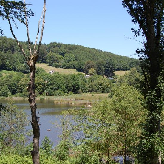 Un étang au milieu du paysage