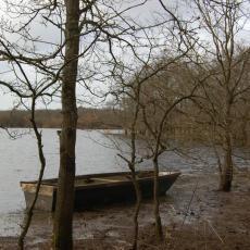 Paysage du lac de Grand Lieu