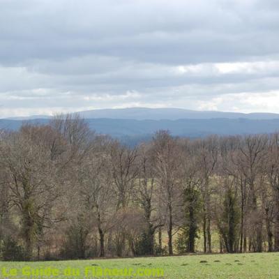 Point de vue sur la Montagne Noire