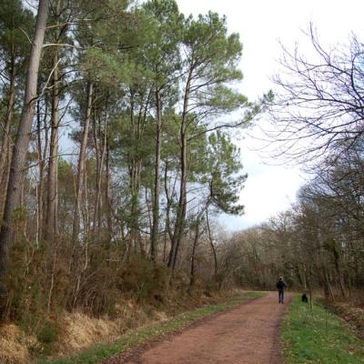 Le chemin de randonnée